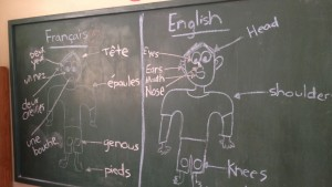 A chalkboard displays the body parts in French and English